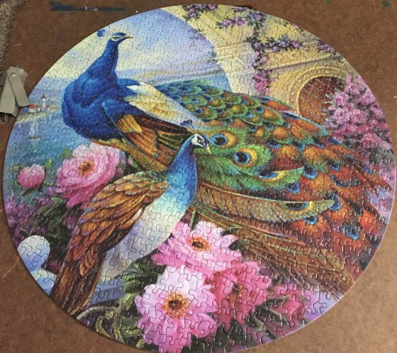 Peacock_Puzzle